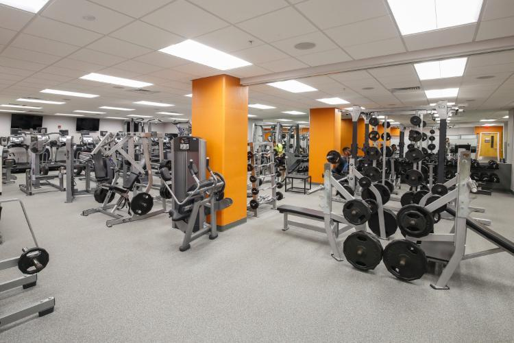 Gym with free weights and weight machines